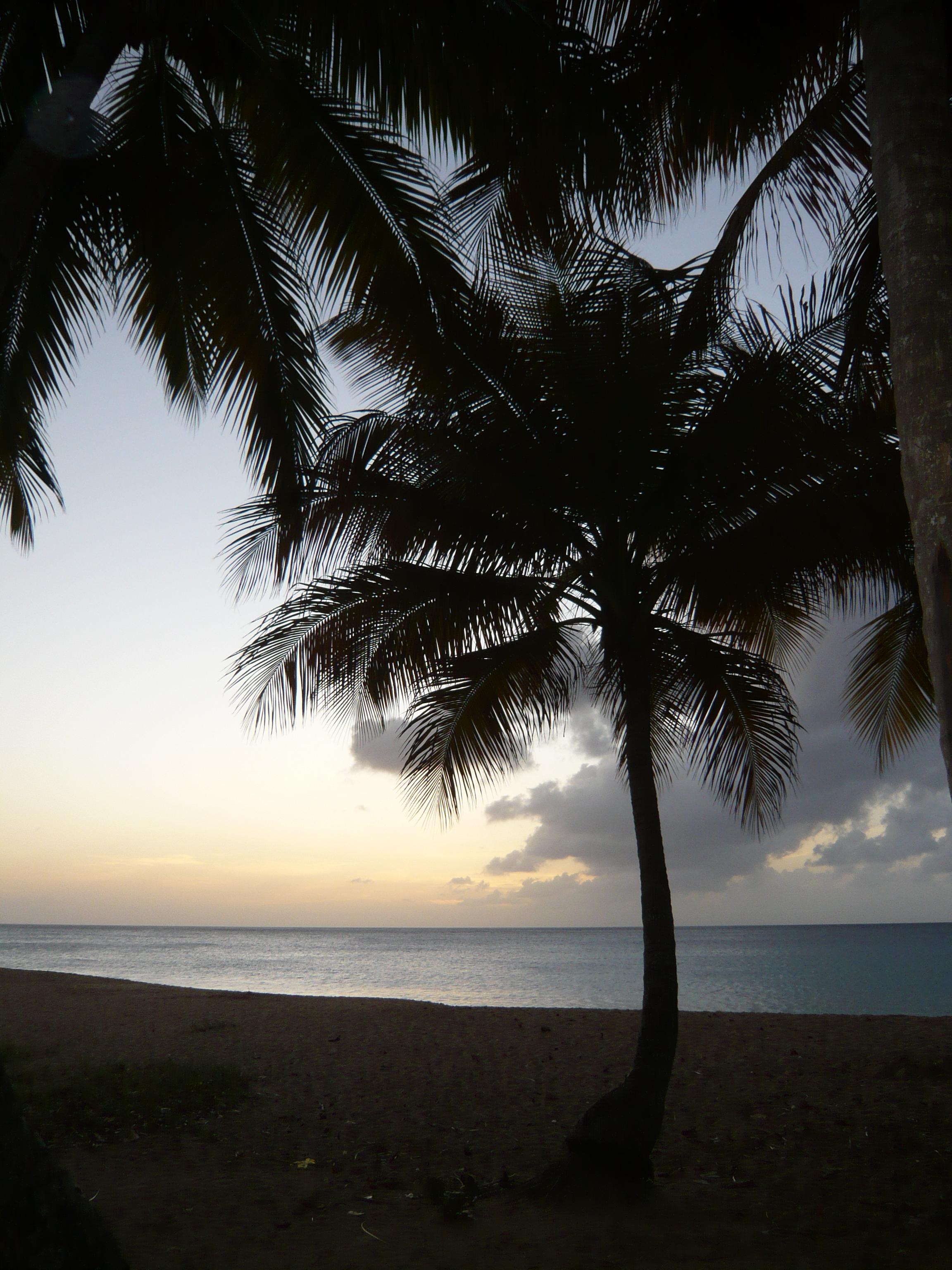 Plage de Grande Anse, un soir parmi tant d'autres